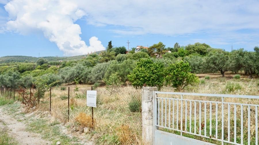 Οικόπεδο προς πώληση σε Νέα Κερδύλια, Σέρρες