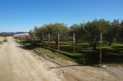 Земя за продажба в Неа Перамос, Кавала