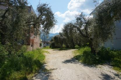 Οικόπεδο προς πώληση σε Λιμένας, Θάσος