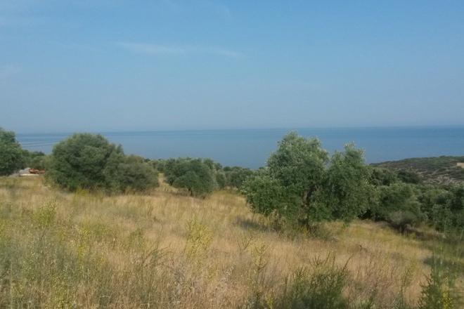 Αγροτεμάχιο προς πώληση σε Αστρίδα, Θάσος